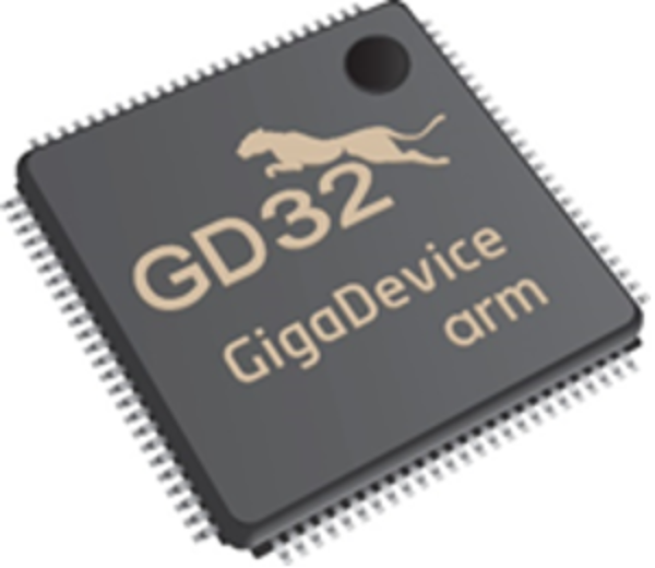 GigaDevice Chip